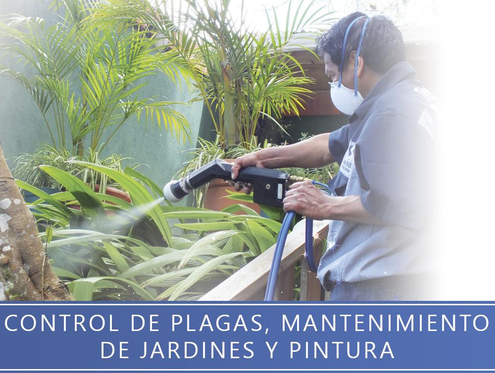 Control de plagas, mantinimiento de jardines y pintura
