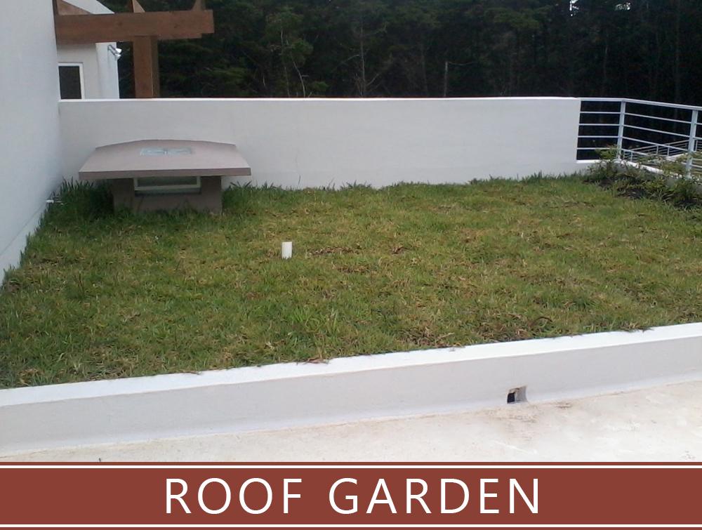 Roof garden web